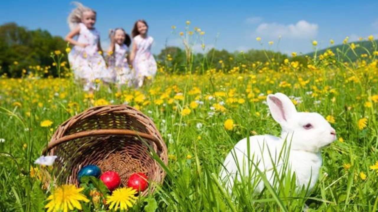 easter egg hunt in orlando fl