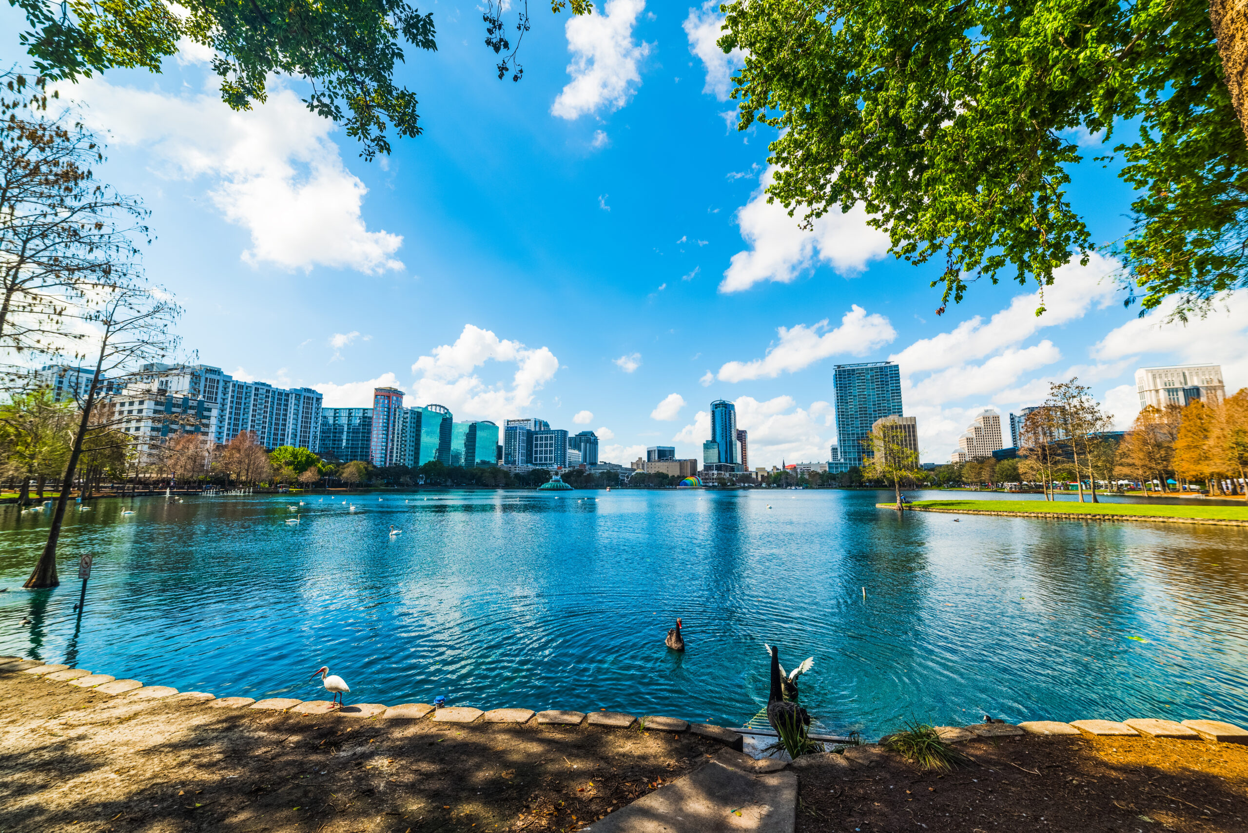 cheap things to do in orlando