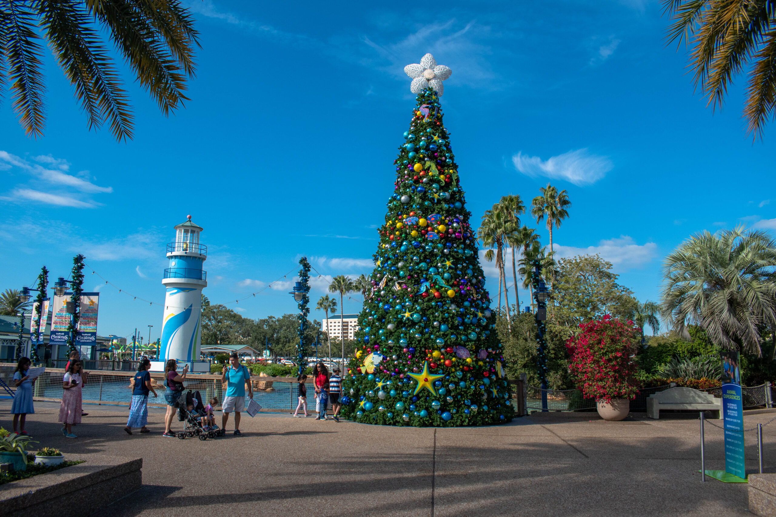 orlando restaurants open christmas day