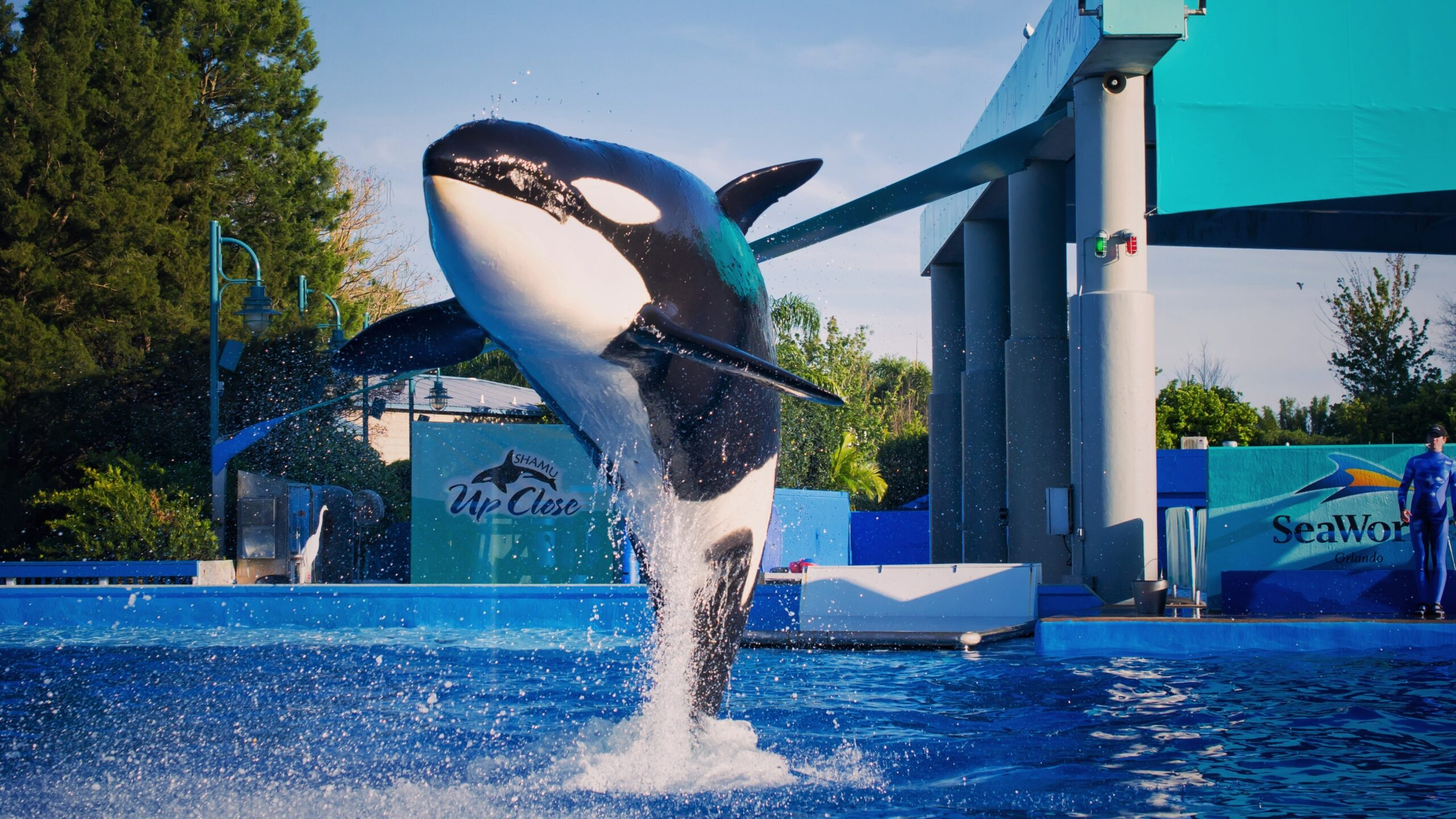 SeaWorld Orlando Attractions