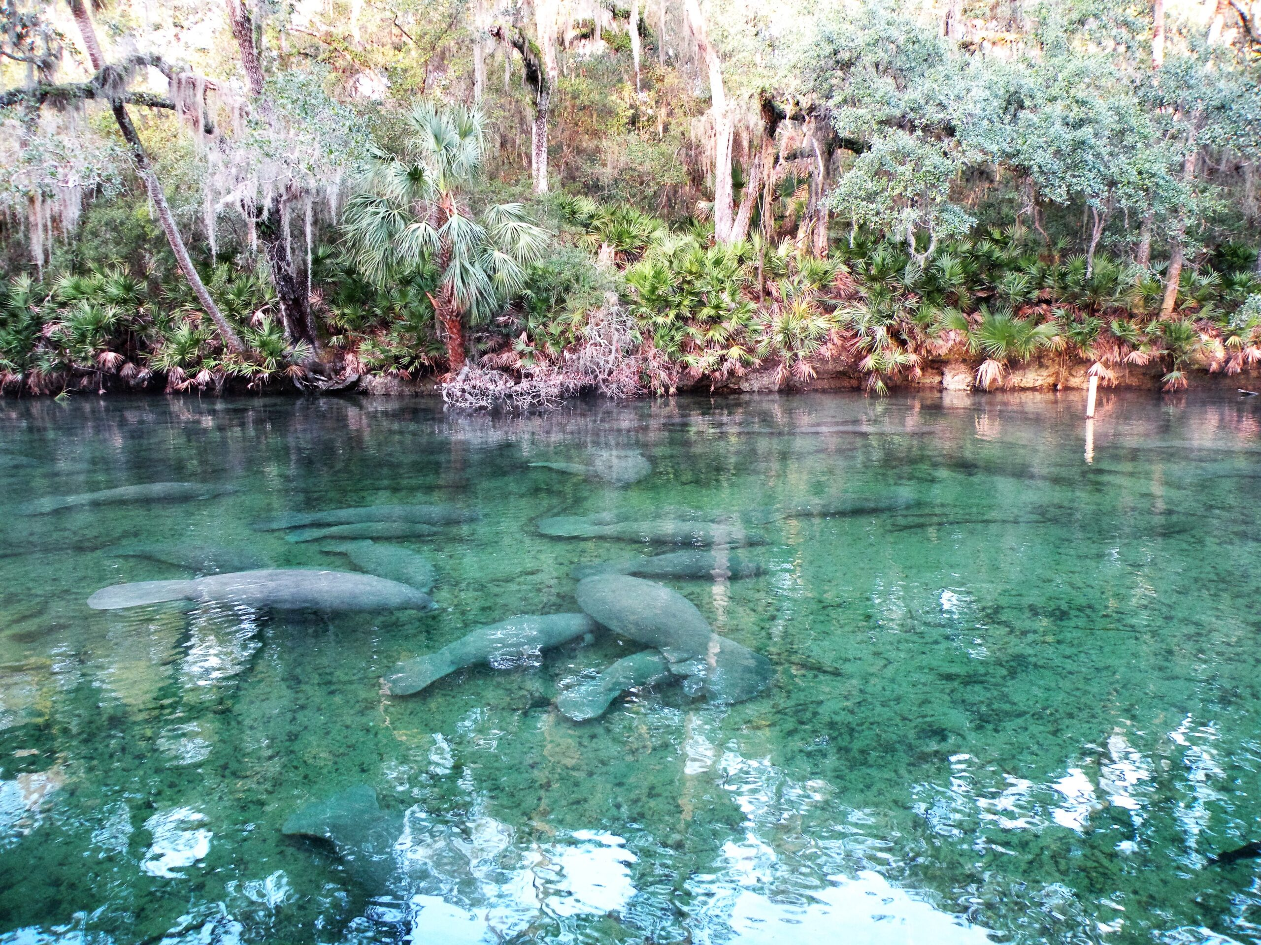 Quick Day Trips From Orlando
