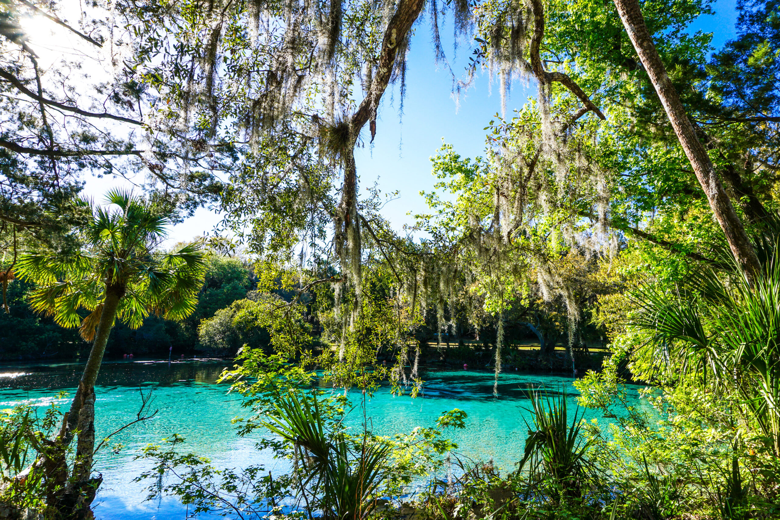 day trips in orlando